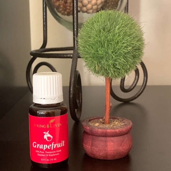 Young Living Essential Oil - GRAPEFRUIT 15ml